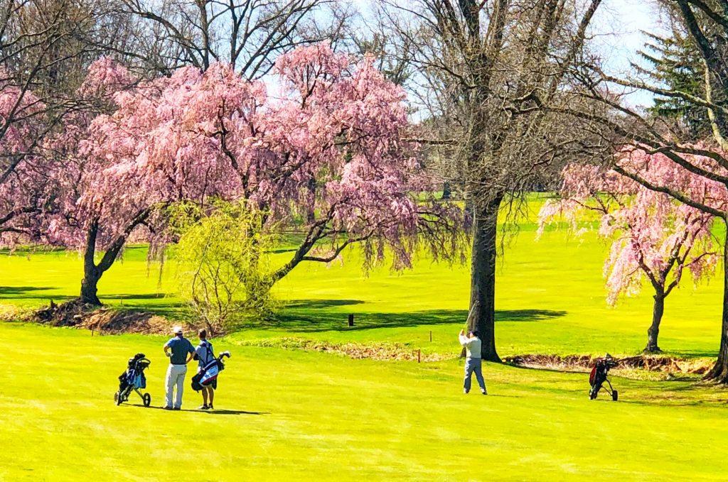 Golfspelare på vacker golfbana