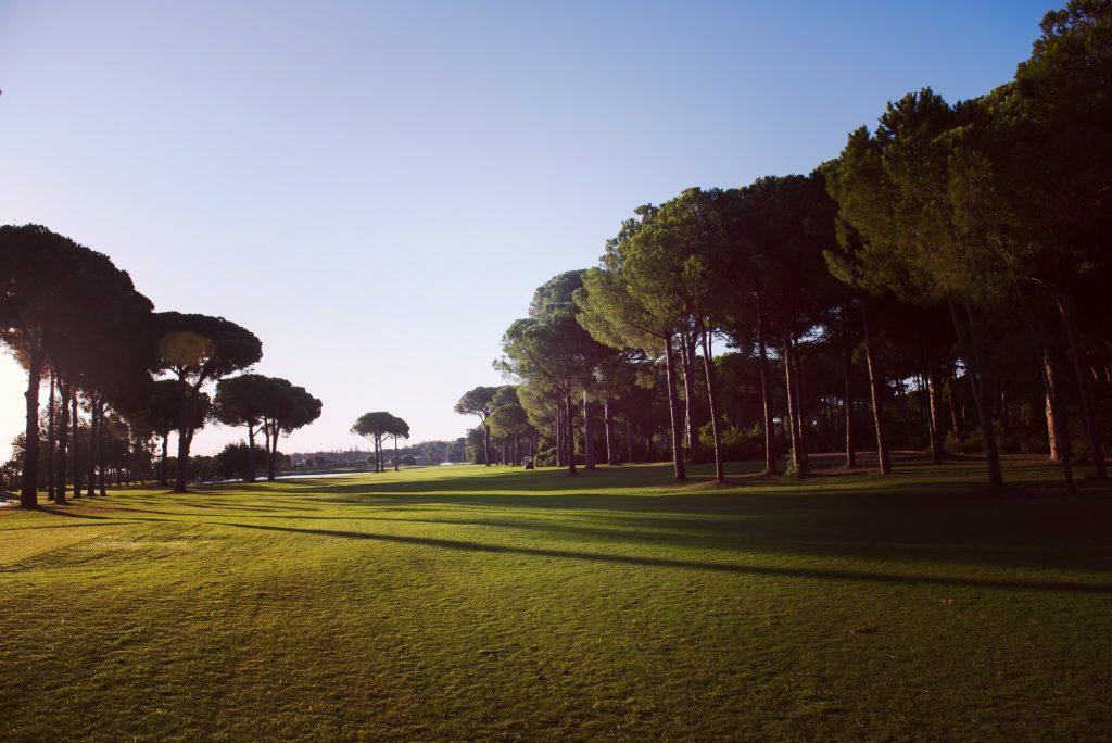 Golfbana i skymningen